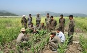 Farmers taking part in field training in Kangwon Province. Photo: Concern Worldwide.
