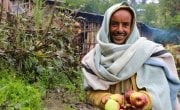 Ahimed Ali Mahamed now has apple trees - and the skills to tend to them thanks for Concern supported programme. Photo: Jennifer Nolan / Concern Worldwide