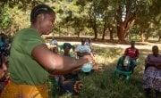 Agness, a Community Health Volunteer demonstrating how she will teach people handwashing. Photo: Henry Mhango