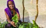 Sori in her kitchen garden in Kalacha, Marsabit. She is holding some of the vegetables she has been able to grow in her kitchen garden in the Chalbi desert. Photo: Jennifer Nolan / Concern Worldwide