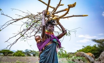 Atiir collects firewood every day to make money to feed her family. Recurrent drought in Turkana, Kenya has made it her only means of survival. Photo: Gavin Douglas / Concern Worldwide.
