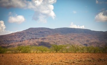 The arid landscape of Turkana in Northern Kenya. These lands haven't seen proper rain since 2017 and so are becoming more and more inhospitable.   Photo: Gavin Douglas / Concern Worldwide