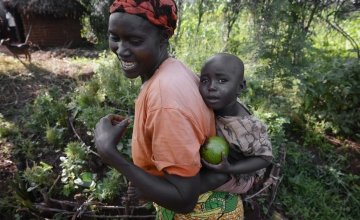 Esperence and her two-year-old daughter Delphine collect ripened avocados from their garden plot in Kirundo, Burundi. Photo: Chris de Bode