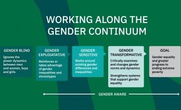 The gender continuum graphic.