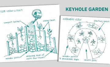 A keyhole garden