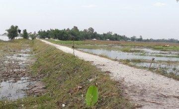 750 feet repaired embankment/road, Dhubni, Hatibandha. Photo: Md. Ohidul Islam, Field Coordinator/ Concern Worldwide