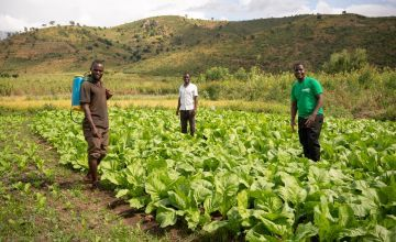Concern staff member Timothy advises two farmers in Malawi.