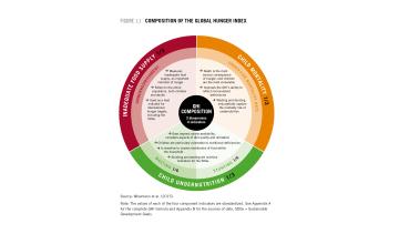 Understanding the Global Hunger Index