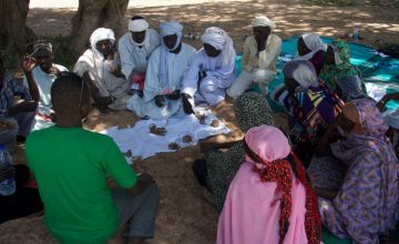 Tcharow Comite Communautaire d'Action discuss the results of the vote on impact and frequency of hazards in order to prioritise the most important ones in Sila Region, Chad. Photo: Dom Hunt / Concern Worldwide.