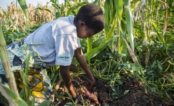 Fatima Guwira was helped by Concern after losing all of her crops to the floods that devastated Nsanje District, Malawi, in January 2015. Credit: Concern Worldwide
