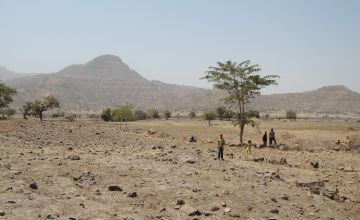 Children walk over agricultural land in Tselmti woreda. Nothing is growing in the current drought. Ethiopia/Feb. 2016 Credit: David Hunn