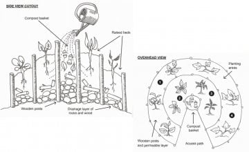 Kitchen gardens are vegetable patches designed especially to maximise the production of food throughout the year