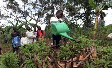 Victoria Macumi's son is watering their kitchen garden in Burundi