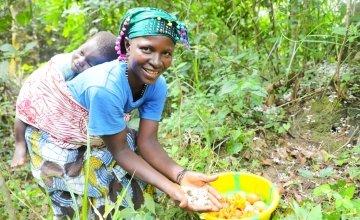 Kadiatu Bangura (35) with son Sheku Conteh (1) picking orange wild fruits in the local forest. She is a participant of the LANN programme run by Concern Worldwide and Welthungerhilfe in Sierra Leone. Photo: Jennifer Nolan / Concern Worldwide.