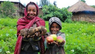 Mehamed's family grow potatoes, as well as apples. Photo: Jennifer Nolan/ Concern Worldwide.