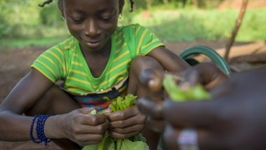 Seven-year-old Davilla helps her aunty Claudia Batene prepare squash leaves for the family meal. The squash leaves are cultivated from seeds provided by Concern. The family also received groundnut, bean and sesame seeds, tools - including two machetes and a hoe - and farming skills. Photographer: Chris de Bode