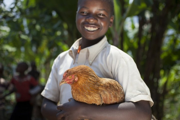 Olivier Iranyumviye (10) son of Alphonsine Niyonzima (21) with the chickens they have bought with the profits of her business, thanks to investment from the Graduation Programme. At their home in Mabayi, Cibitoke. Photo: Abbie Trayler-Smith / Concern Worldwide