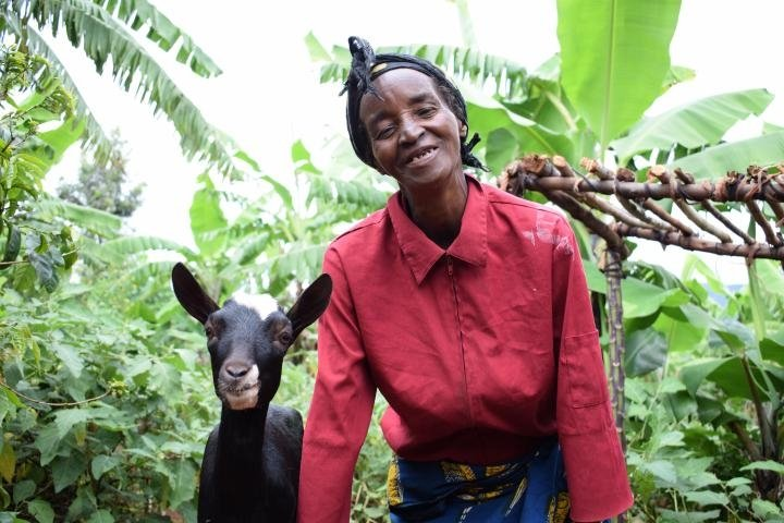 Widow Isabelle Mundana (66) has benefited from five goats as part of Concern's community and household resilience programme. Photo: Darren Vaughan / 2017 / Burundi