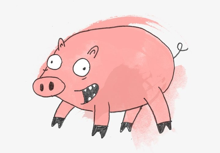 Pig - Alternative Charity Gifts