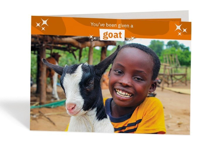 Nkhonde, 8, and Alma the goat have become the best of pals in Siki Village Malawi. Photo: Jason Kennedy / Concern Worldwide