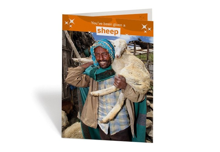 A sheep can make a real difference to a vulnerable family, like Yimam Eshete's family in Ethiopia. Photo: Nick Spollin / Concern Worldwide