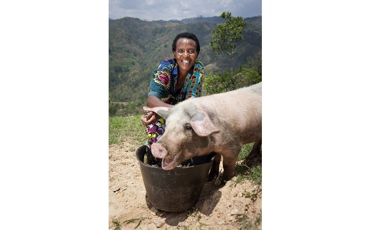Violette Bukeyeneza (45) with the pig she has bought from the profits of her business at her home in Bukinanyana, Cibitoke, Burundi. She is a beneficiary of tthe Graduation programme and her business has gone from strength to strength. Photo: Abbie Trayler-Smith / Concern Worldwide