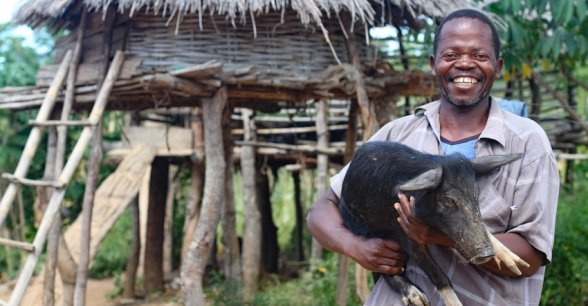 Joseph Kanyangalazi with one of his pigs, Malawi. Photo: Jennifer Nolan / Concern Worldwide.