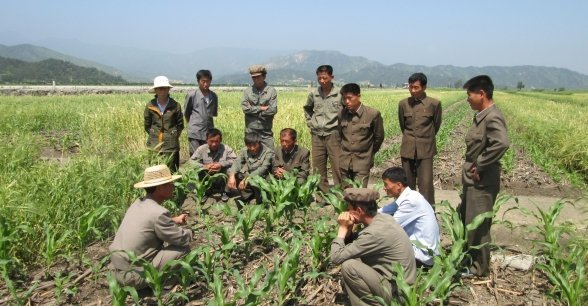 Farmers taking part in field training in Kangwon Province. Photo: Concern Worldwide.