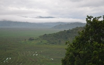 The typical hilly topography of the Gisgara District in Rwanda. Photo: Síle Sammon / Concern Worldwide.