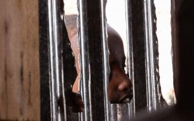 A boy watches through a window in a hut. Photo: Eamon Timmins/Concern Worldwide