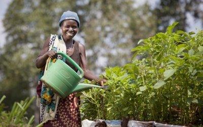 Euphemia Inina waters her home garden in Mabayi, Cibitoke. Photo: Abbie Trayler-Smith