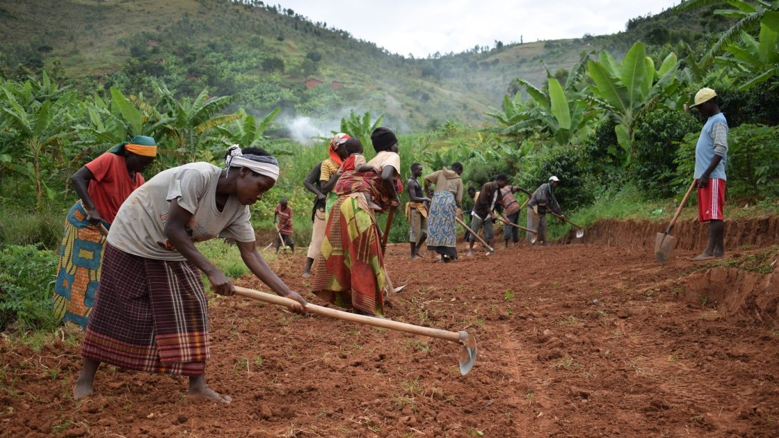 A group of 50 people work on restoring a 4km stretch of road in Rushanga as part of a cash-for-work initiative run by Concern to open up inaccessible areas and provide additional income for vulnerable households. In Gitega, more than 2,000 people have benefited from the community resilience programme. Photo Darren Vaughan