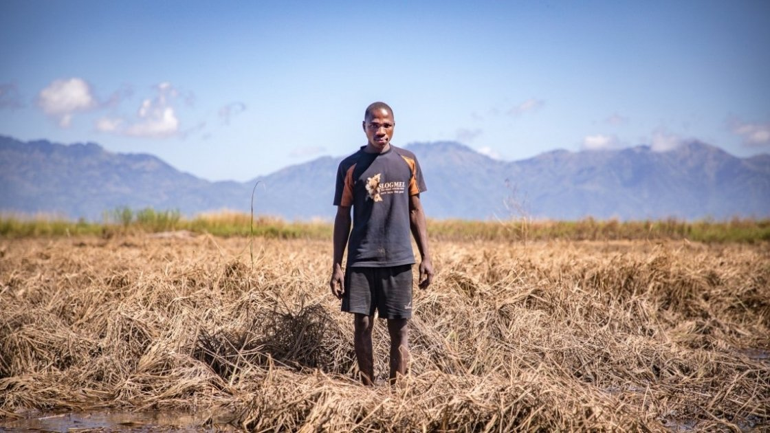 Patrick Ghembo stands with his crops that were destroyed by Cyclone Idai. Photo: Gavin Douglas/ Concern Worldwide.