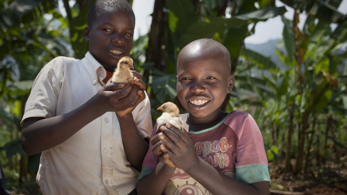Kevin Niyomuhoza (6) and Olivier Iranyumviye (10) with the chickens they have bought thanks to the Graduation Programme. Photo: Abbie Trayler-Smith