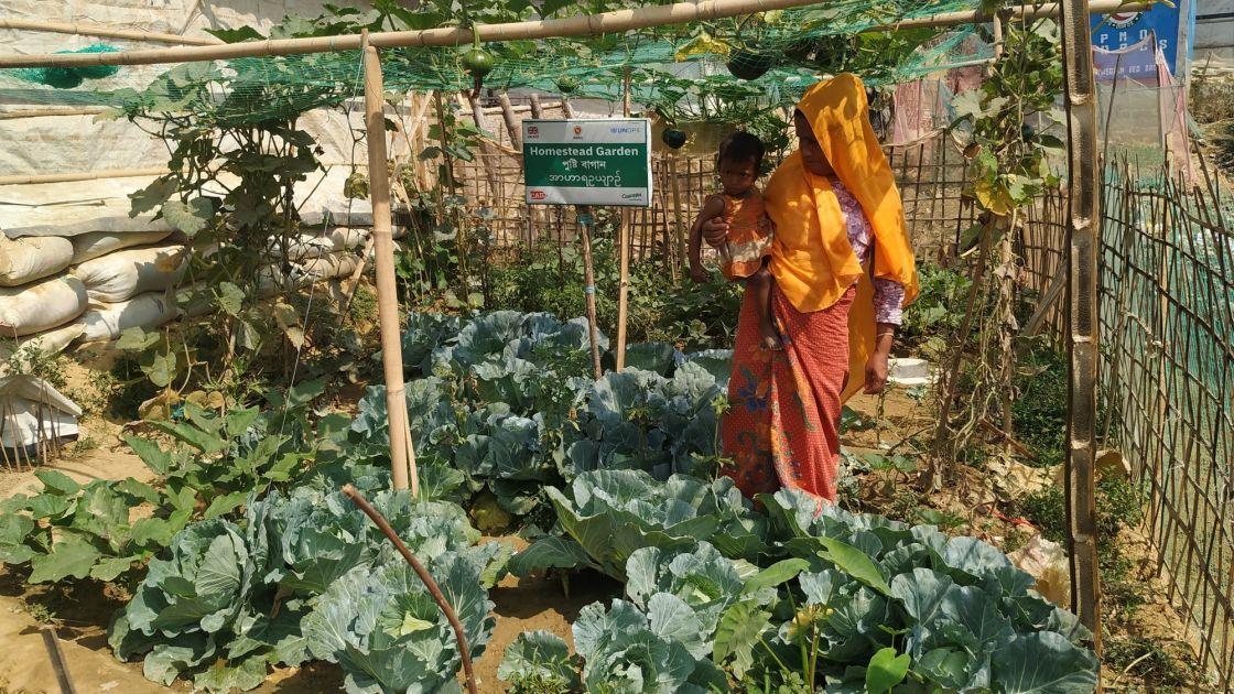 Ayesha started to earn income from her garden in Cox's Bazar, Bangladesh. Photo: Taslim Anwar