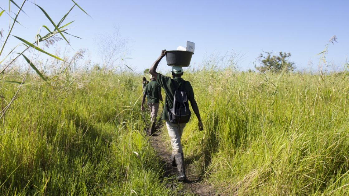 The Concern team walks from the riverbank to the remote community of Bilinguinho, which is only accessible to Chinde by boat. Photo: Crystal Wells / Concern Worldwide.