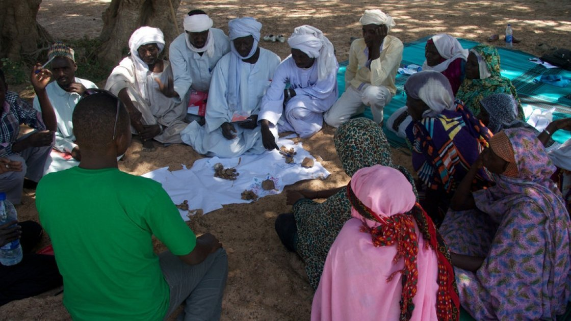Tcharow Comite Communautaire d'Action discuss the results of the vote on impact and frequency of hazards in order to prioritise the most important ones in Tcharow, Goz Beida, Sila Region, Chad. Photo: Dom Hunt.
