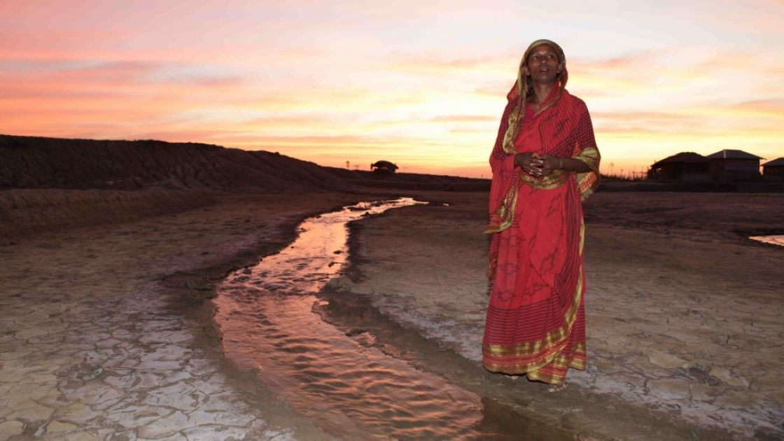 Rashida, tiger widow. Salinity along the coast has increased greatly from rising sea levels due to climate change. Photo: Mahmud / Map Photo Agency.