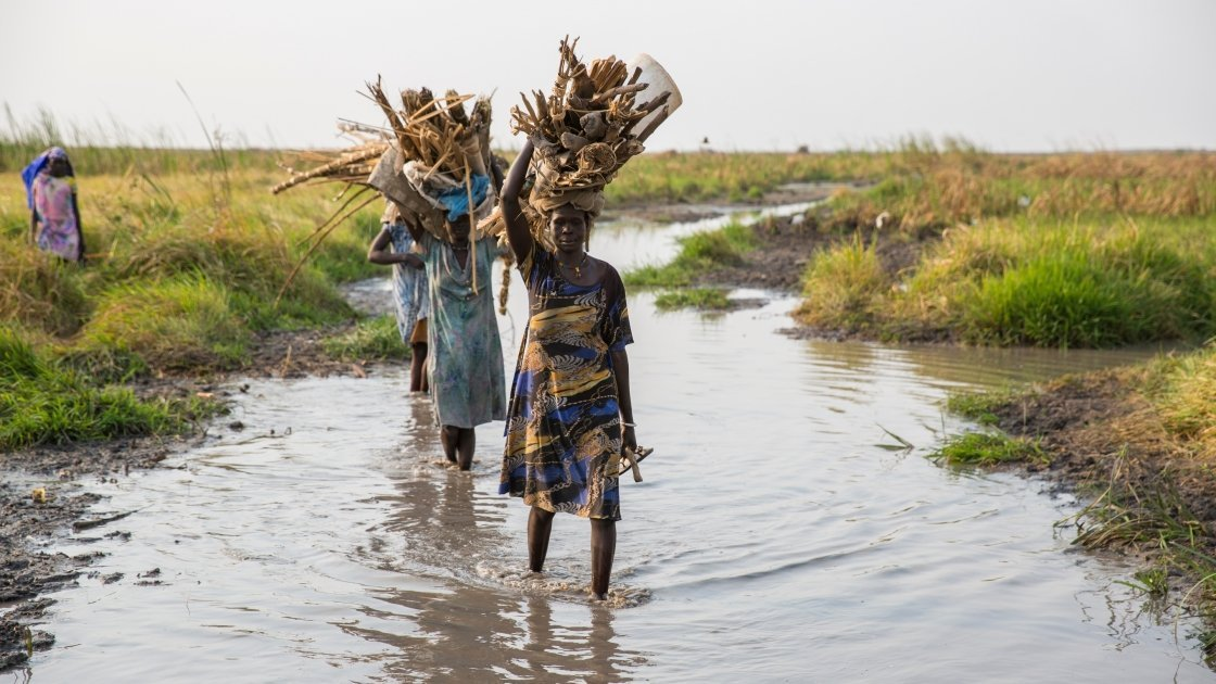 Women carry firewood through the swamps of Leer County in Unity State, South Sudan. Photo: Kieran McConville / Concern Worldwide.