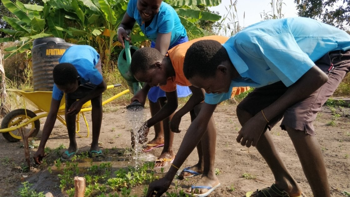 Watering guava seedlings, Babcok School Environment Club, BRACED Programme, South Sudan, 2017. Photo: Michael Mulpeter / Concern Worldwide.