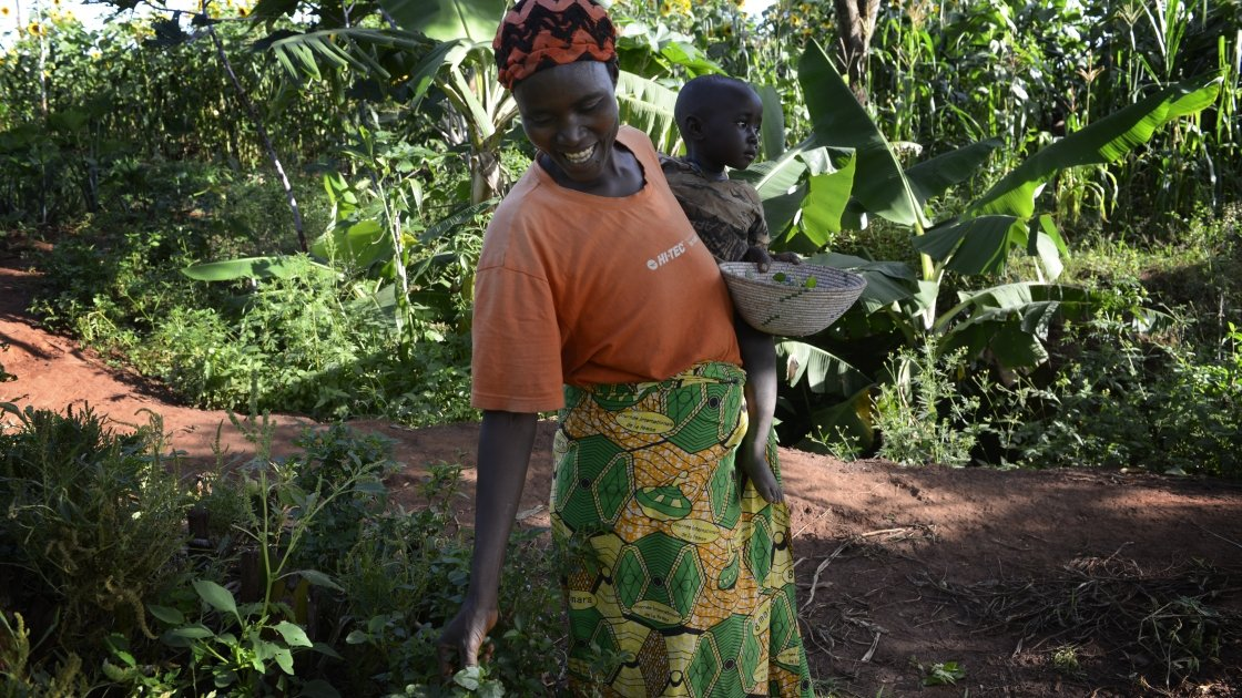 Esperence Mutetiwabo and her two-year-old daughter Delphine collect amaranth leaves from their kitchen garden in Kirundo province, in Burundi.