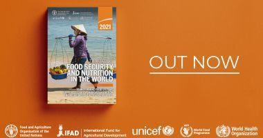 'Out now' image of the 2021 SOFI report