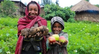 Mehamed's family grow potatoes, as well as apples. Photo: Jennifer Nolan/ Concern Worldwide.