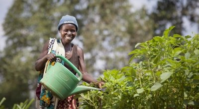 Euphemia Inina waters their market garden at her home in Mabayi, Cibitoke. As part of the Graduation Programme all participants are given seeds and training on how to grow food in their gardens. Photo: Abbie Trayler-Smith / Concern Worldwide