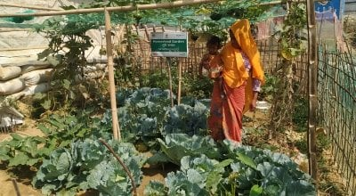 A woman stands in a vegetable garden holding her child