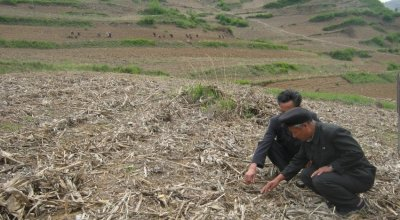 Mr. Jong is describing how conservation agriculture could improve livelihoods and food security of farmers in this area, Kangwon Province, DPRK. Photo: Catherine Dunnion.